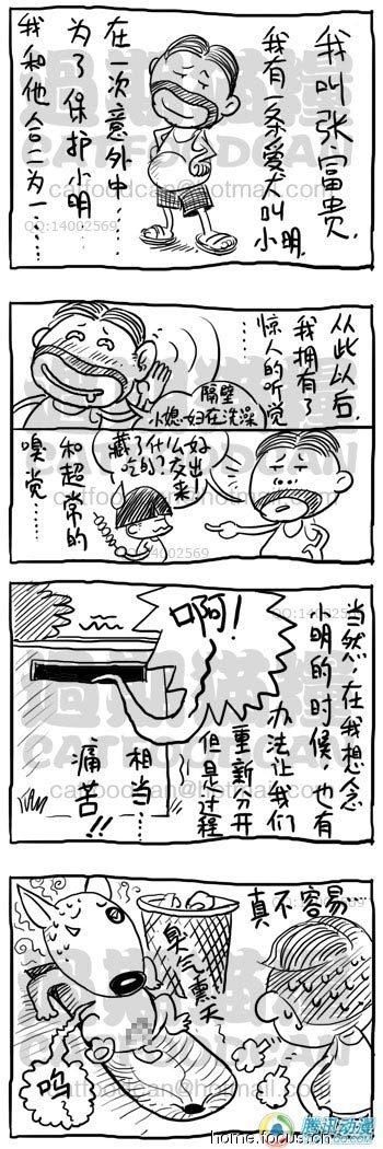 张富贵搞笑漫画继续-论坛同学大全漫画图片鹿晗图片