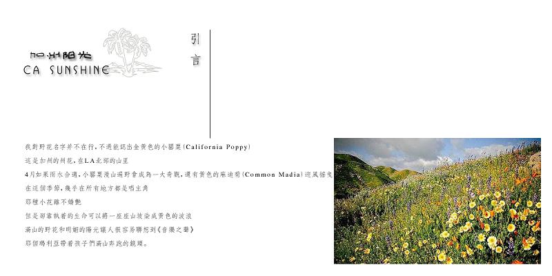 阳光:『加州方案』天地远洋v阳光图片--SP-赵磊品牌服装海报设计图片
